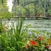 Magnolia Plantation Swamp Garden Poster