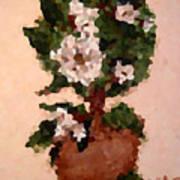 Magnolia Topiary IIi  Poster