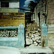Main Street Bonaire Poster