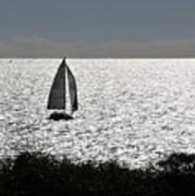 maine 44 Sailboat Poster