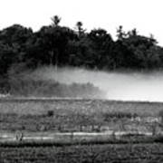 Maine Fog Rolls In  Poster