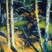 Maine Landscape 1919 Poster