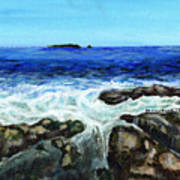 Maine Tidal Pool Poster