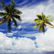 Majuro Atoll, Two Coconut Trees Lean Over Poster