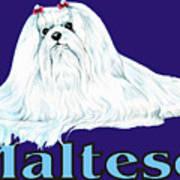 Maltese Pop Art Poster