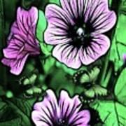 Malva Flowers Poster