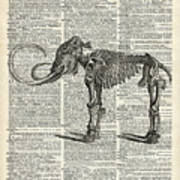 Mammoth Elephant Bones Over A Antique Dictionary Book Page Poster