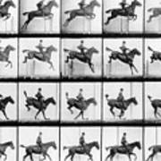 Man And Horse Jumping Poster by Eadweard Muybridge
