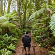 Man Relaxing In Strahan Rainforest Retreat Poster
