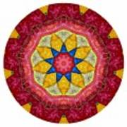 Mandala - Talisman 1404 Poster