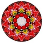 Mandala - Talisman 4010 Poster