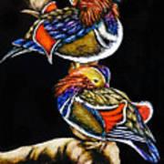 Mandarin Ducks - Sa106 Poster