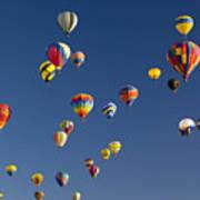 Many Vividly Colored Hot Air Balloons Poster