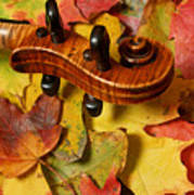 Maple Violin Scroll On Fall Maple Leaves Poster