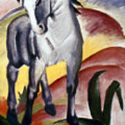 Marc: Grey Horse, 1911 Poster