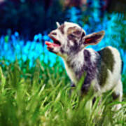 Baby Goat Kid Singing Poster