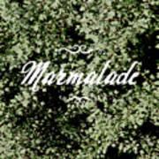 Marmalade Poster