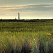 Marsh Grass And Morris Island Lighthouse Poster