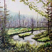 Marsh Lands Poster