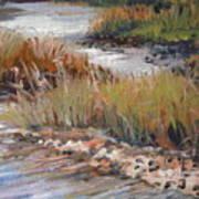 Marsh Reflections Poster