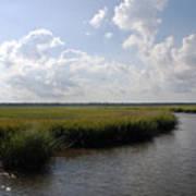 Marsh Scene Charleston Sc II Poster