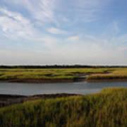 Marsh Scene Charleston Sc Poster
