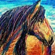 Marsh Tacky Wild Horse Poster