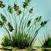 Marsh Weeds Poster