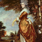 Mary Amelia First Marchioness Of Salisbury Poster by Sir Joshua Reynolds