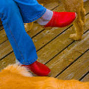 Marys Red Shoes Poster