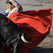 Matador Padilla II Poster