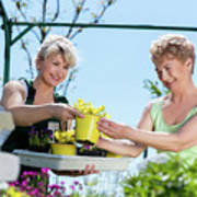 Mature Gardener Helps Senior Client With Flowers Poster