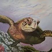 Maui Sea Turtle Poster