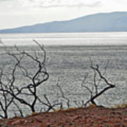 Maui's View Of Lanai Poster