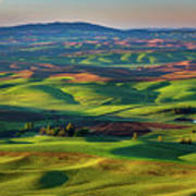 May On The Palouse  Poster