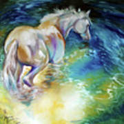May Waterbaby Equine Poster