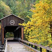 Mckee Bridge In Fall Poster
