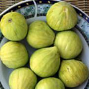Mediterranean Figs Poster