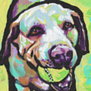 Mellow Yellow Lab Poster