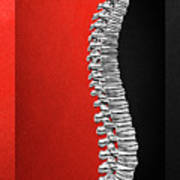 Memento Mori - Silver Human Backbone Over Red And Black Canvas Poster