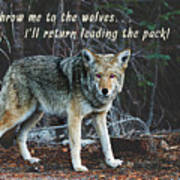 Menacing Wolf In The Woods Lead The Pack Poster