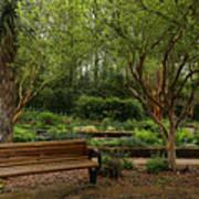 Botanic Garden Poster
