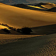Mesquite Flat Sand Dunes Poster