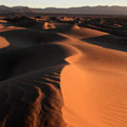 Mesquite Sand Dunes In Death Valley National Park At Sunrise Poster