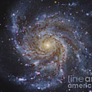 Messier 101, The Pinwheel Galaxy Poster