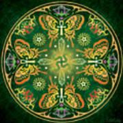 Metamorphosis Mandala Poster by Cristina McAllister