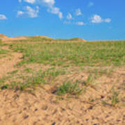 Michigan Sand Dune Landscape In Summer Poster