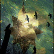 Midnight Magic Poster