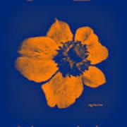 Midnight Orange Passion Flower Poster