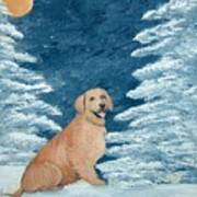 Midnight Snow Poster